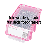 Selbstbohrschraube Senkkopf Inox Kreuzschlitz Form Z mit Bohrspitze
